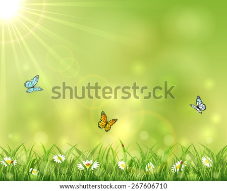 Sunny background with three butterflies, Sun and flowers in the grass, illustration. - stock vector
