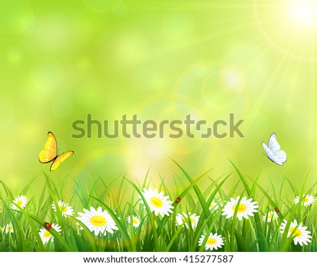 Sunny summer day, butterflies flying above the grass with flowers and ladybugs, illustration.