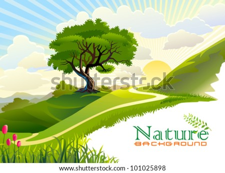 Sunrise in the hills and lonely tree - stock vector