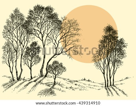 Sunset in the forest. Trees wallpaper. Landscape sketch - stock vector