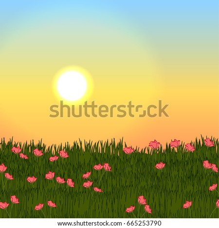 Sunset over a meadow with green grass and pink realistic flowers. Vector landscape can be used in newsletter, brochures, postcards, banner.