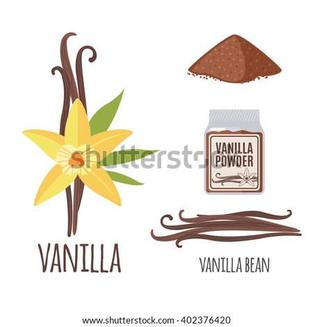 Superfood vanilla set in flat style: vanilla beans, flower, powder. Organic healthy food. Isolated objects on white background. Vector illustration - stock vector