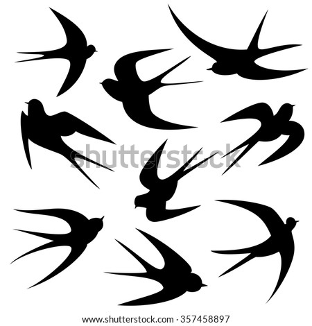 Swallow Silhouette Stock Images Royalty Free Images