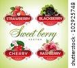 Sweet berry. Strawberry, blackberry, cherry, raspberry - stock vector