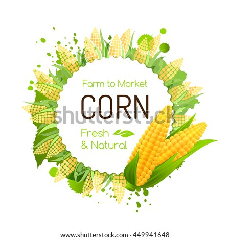 Sweet corn label. Vector banner with maize cobs. Decorative frame for package design.