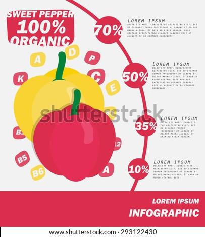 Sweet Papper Infographics , Vegetable . vector illustration - stock vector