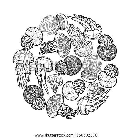 coloring book page design for adults and kids swirl of jellyfish drawn in line art style ocean card in black and white colors