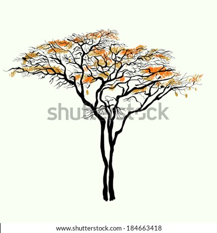 Tree Cartoon Images Symbolic Image of a Tree That