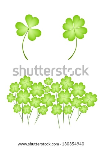 Symbols for Fortune and Luck, Illustration of Fresh Four Leaf Clover Plants or Shamrock for St. Patricks Day Celebration - stock vector