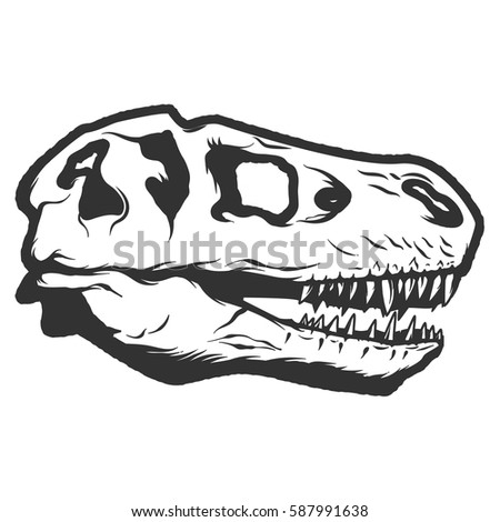 dinosaur fossil diagram dinosaur fossil illustration