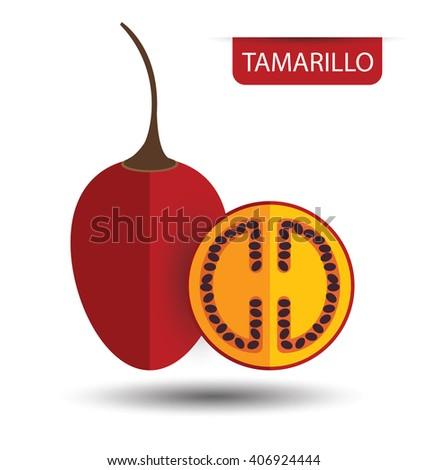 Tamarillo, fruit vector illustration - stock vector