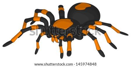 Tarantula - stock vector