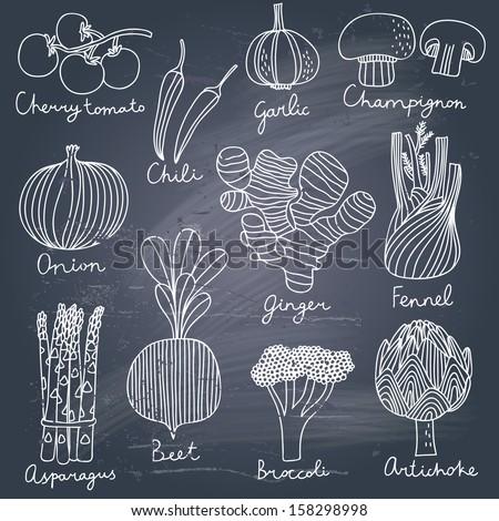Tasty vegetables in vector set - cherry tomato, chili, garlic, champignon, onion, ginger, fennel, asparagus, beet, broccoli, artichoke. Tasty vegetarian  concept collection - stock vector