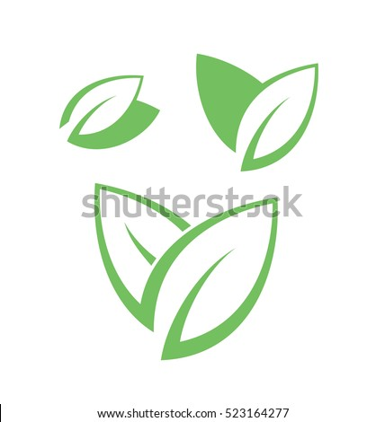 Tea Leaves Stock Images, Royalty-Free Images & Vectors ...
