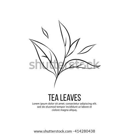 tea leaves vector illustration - stock vector