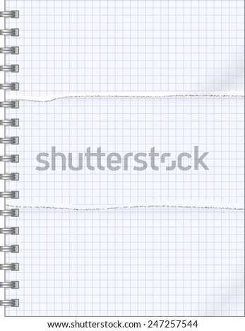 teared pages  of notebook - stock vector