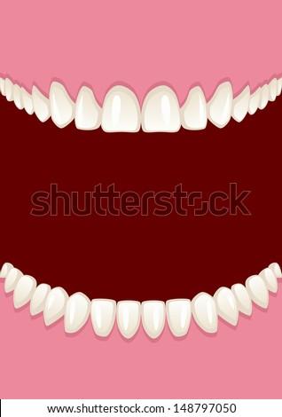 Teeth - stock vector