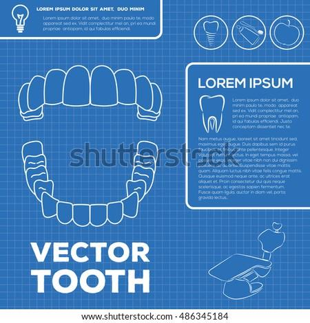Teeth infographic template blueprint style stock vector 486345184 teeth infographic template blueprint style malvernweather Gallery