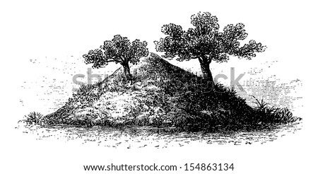 Termite Mound in Southern Africa, 4 meters high and covered by vegetation, engraving based on the English edition, vintage illustration. Le Tour du Monde, Travel Journal, 1881 - stock vector