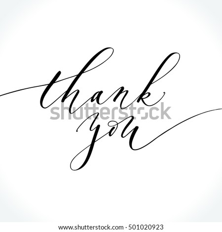 Thank You Modern Calligraphy Brush Painted Stock Vector 501020923 ...