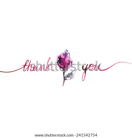 thank you/ pink small rose with pink words on white background/ flowers/ bud/ petals/ watercolor sketch/ vector illustration - stock vector