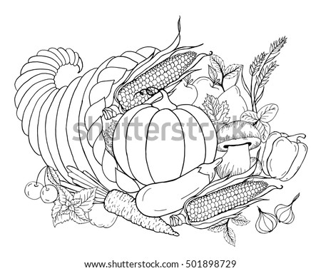 Thanksgiving Cornucopia With Vegetables Horn Of Plenty Black White Hand Drawn Vector Illustration