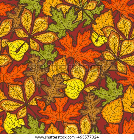 Thanksgiving Day seamless pattern with autumn leaves of trees. Bright season