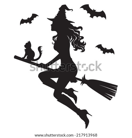The beautiful silhouette of a witch on a broom - stock vector