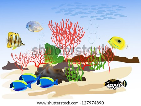The beautiful underwater world with colorful fish. - stock vector