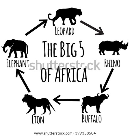 The Big Five of Africa - collection of icons. Vector art. - stock vector
