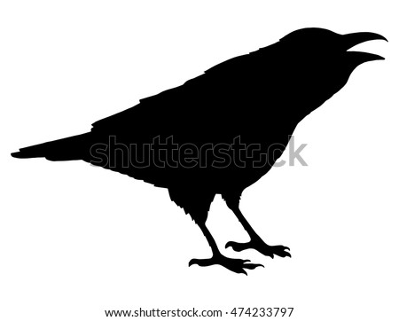 The black silhouette of a crow. Circuit birds.