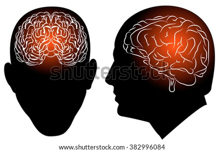 the brain in the head, set, for any ideas and projects, Victor EPS 10 - stock vector