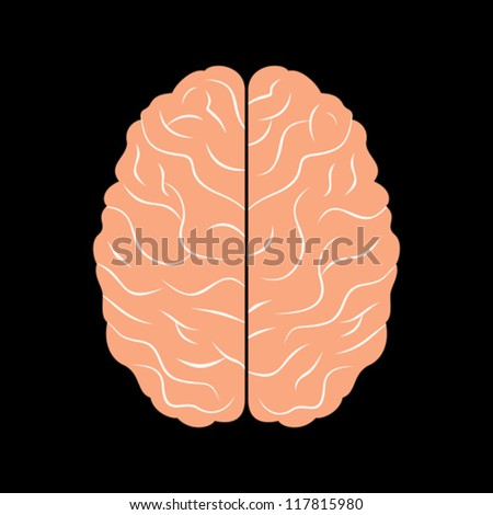 the brain with black background - stock vector