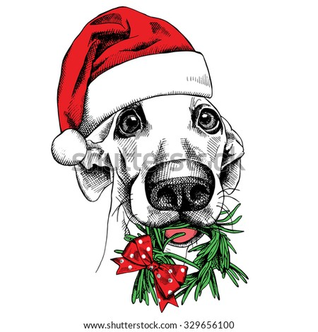 The christmas poster with the image of a dog portrait in the Santas hat and with the christmas wreath. Vector illustration. - stock vector