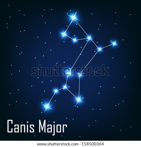 """The constellation """" Canis Major"""" star in the night sky. Vector illustration - stock vector"""