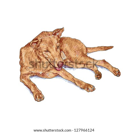 The dog is laying down and almost fallen asleep - stock vector
