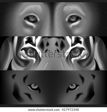 The face of a tiger and a lion - stock vector
