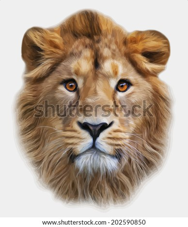 The face of an Asian lion, isolated on white background. The King of beasts, biggest cat, looking straight into the camera. The most dangerous predator. Amazing vector image in oil painting style. - stock vector