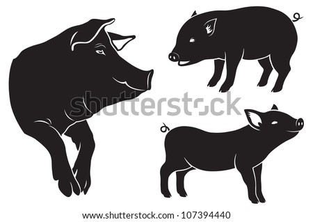 the figure shows a pig - stock vector