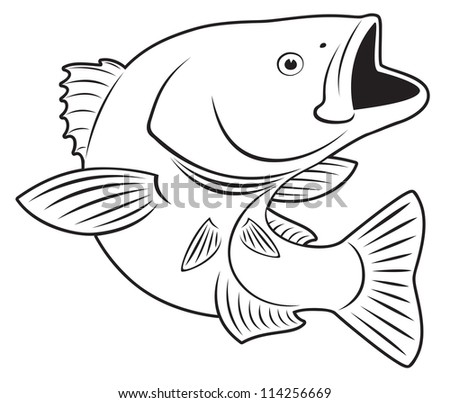 the figure shows sriped bass fish