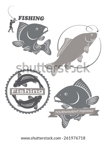 the figure shows the carp fish - stock vector