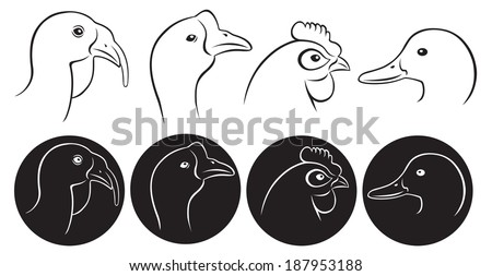 the figure shows the head of poultry - stock vector