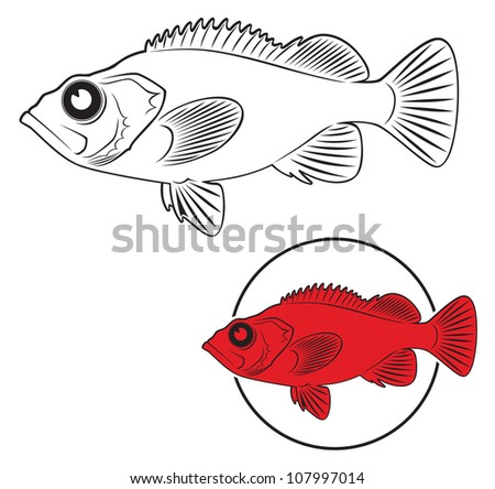 the figure shows the sea bass - stock vector