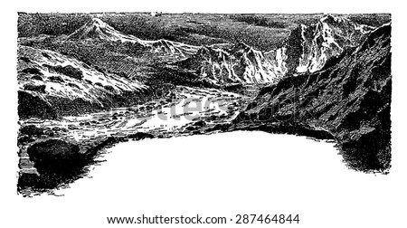 The fourth age of life on earth, vintage engraved illustration. Earth before man - 1886.  - stock vector