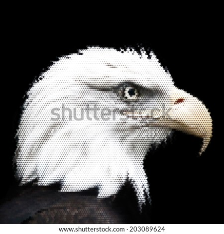 The head of a bald eagle, haliaeetus leucocephalus, isolated on black. Side face portrait of American eagle, US national character, very beautiful bird with proud expression. Vector dotted image. - stock vector