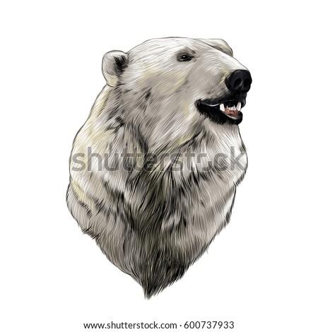 Bear Head Side Logo