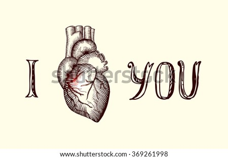 The human heart illustration card Valentines Day - stock vector