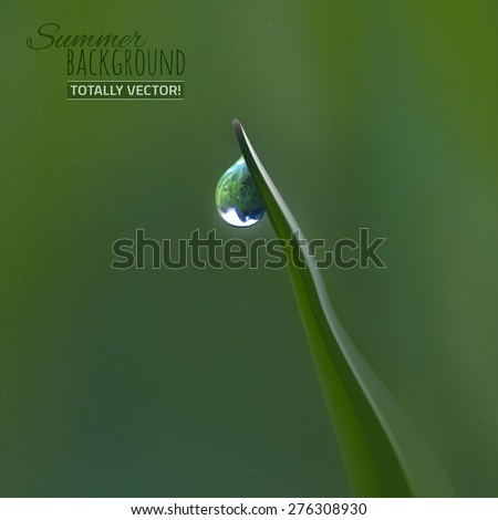 The illustration of  beautiful summer ecological background with transparent drop on a grass blade. Realistic graphic style. Totally vector image.
