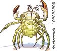 The illustration of the sea crab. He looks at camera and gets up his claws and he looks dangerous. - stock photo