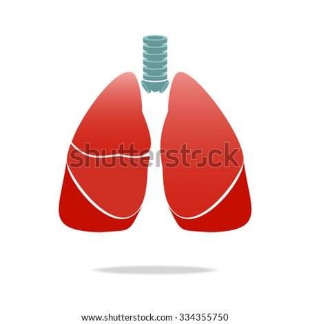 The image of lungs on a white background.